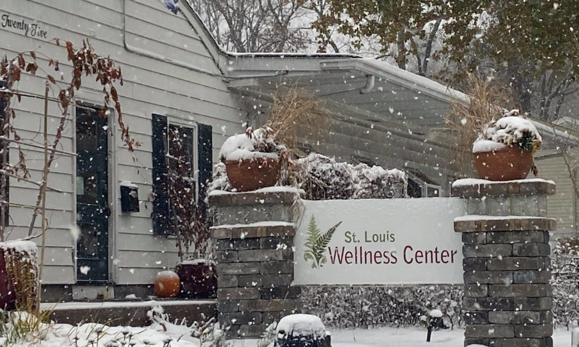 St. Louis Wellness Center